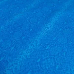 Cobra Azul (2)