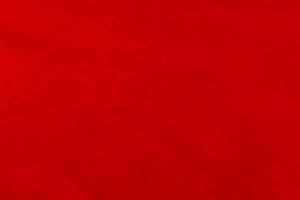 Alamo Rojo (3)