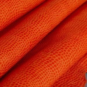 Komodo Naranja (4)