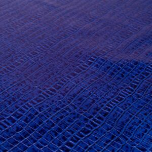 Tejus Crocco Azul (2)