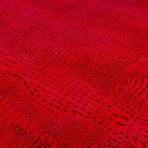 Yacaré Rojo (2)