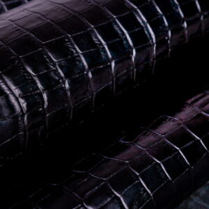 Tejus Crocco Negro (7)