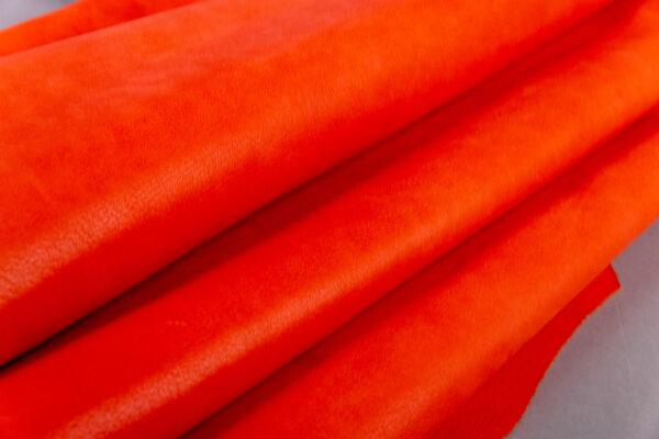 Alazán Naranja (1)