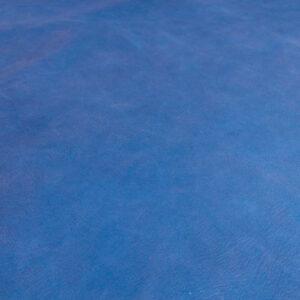 Búfalo Azul (3)